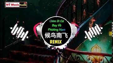 唐焯仪ZOET - 候鸟南飞 (DJ抖音版) Chim Di Cư Bay Về Phương Nam (Hậu Điểu Nam Phi) Remix - Đường Trác Nghi ZOET