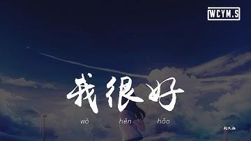 刘大壮 - 我很好 (吉他版)「我很好,只是偶尔遗憾会从眼里掉」【动态歌词/pīn yīn gē cí】